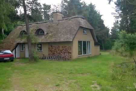 Sommerhus tæt ved Vesterhav, skov og natur - Ulfborg - Blockhütte