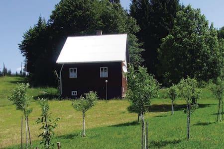 4 Bedrooms Home in Trsce - Trsce - Haus