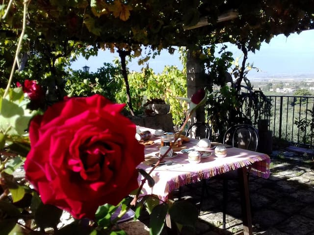 """Melo"" Ronnavona B&B Countryside!"