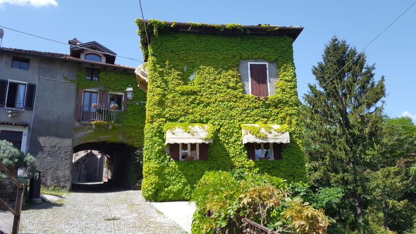 The Ivy House in the Castle