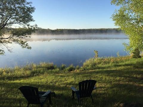 Lakeside Lily Pad