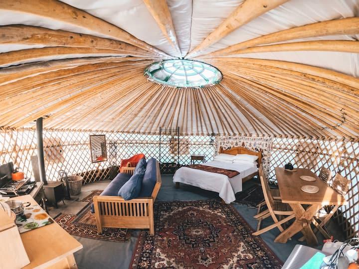 Yurt in South Devon (Heathfield Escapes, sleeps 4)