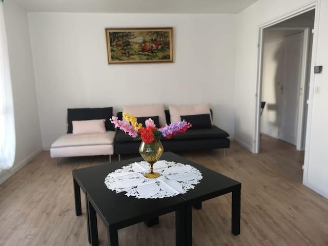 Proximité de Paris, grand appartement à Villejuif
