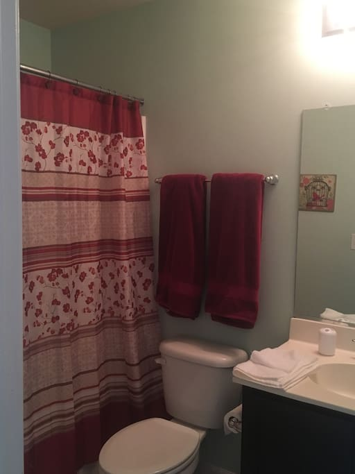 Your private bathroom. I provide clean towels, washcloths, shampoo, conditioner, soap, hair dryer, and anything else you may need.