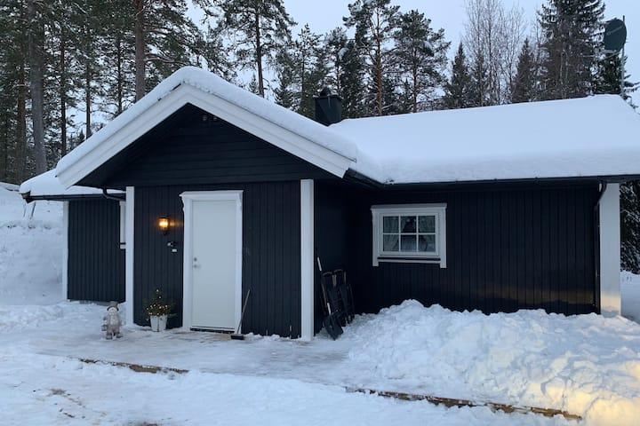 Koselig hytte i Ljørdalen