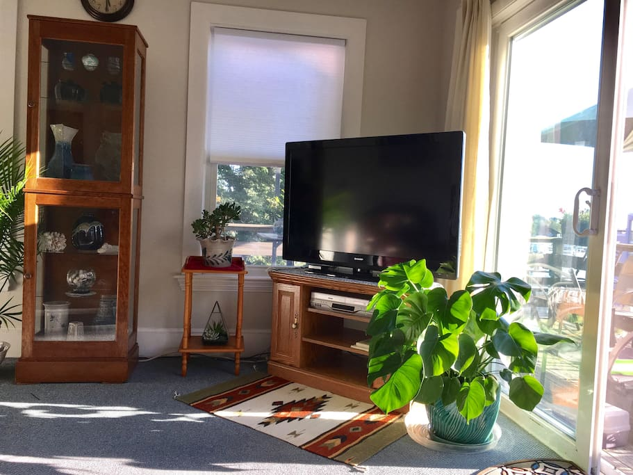 Bright Sunlit Living Room 47 inch Flat Screen Cable TV