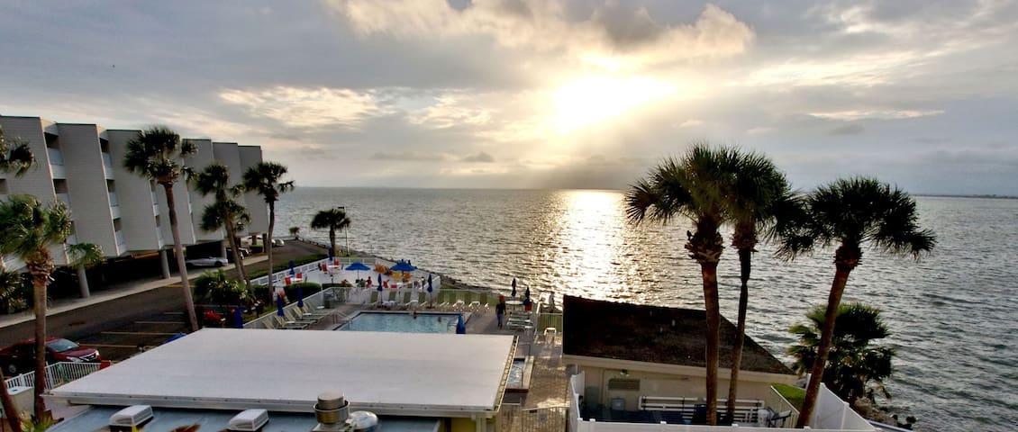 Charming Waterfront Condo - Tampa - Condominium