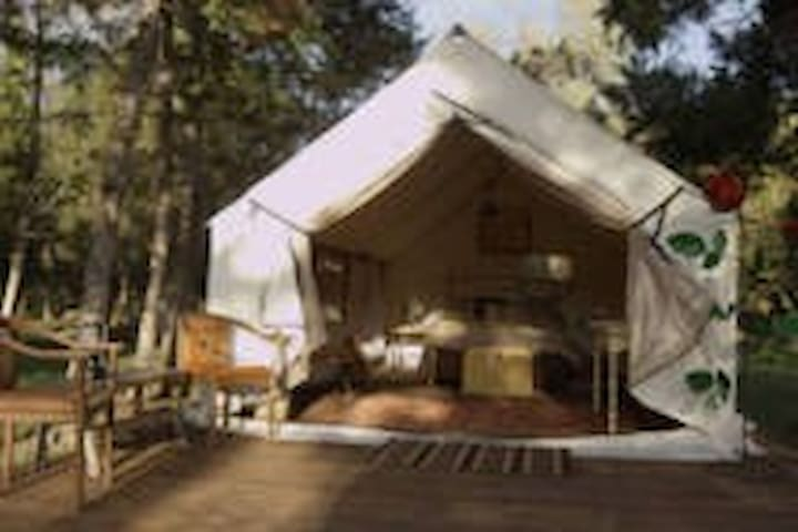 Glamping tents on 80 acre ranch - Helena - Telt