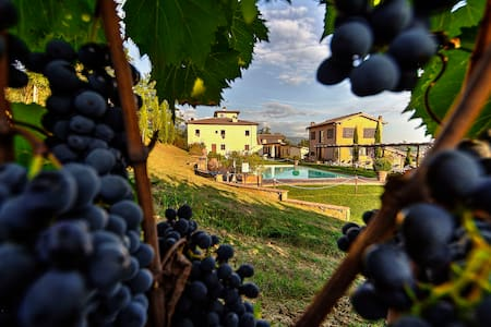 Luxury Suite in Chianti vineyard - Rignano sull'Arno - Apartment