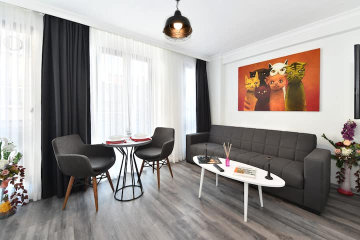 Cozy Loft Modern Apt. at TAKSIM in City Center. 2