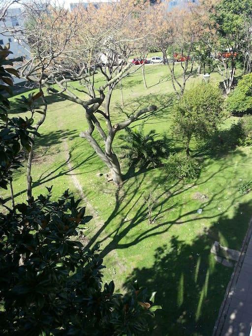 Vista al parque desde el balcón lugar para colgar ropa