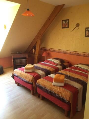 Chambre paisible 2 lits simples vue sur jardin - Le Mans - Casa