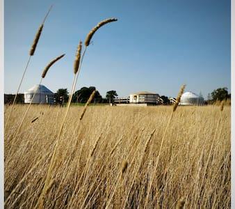 Meadow Vale Water Yurt