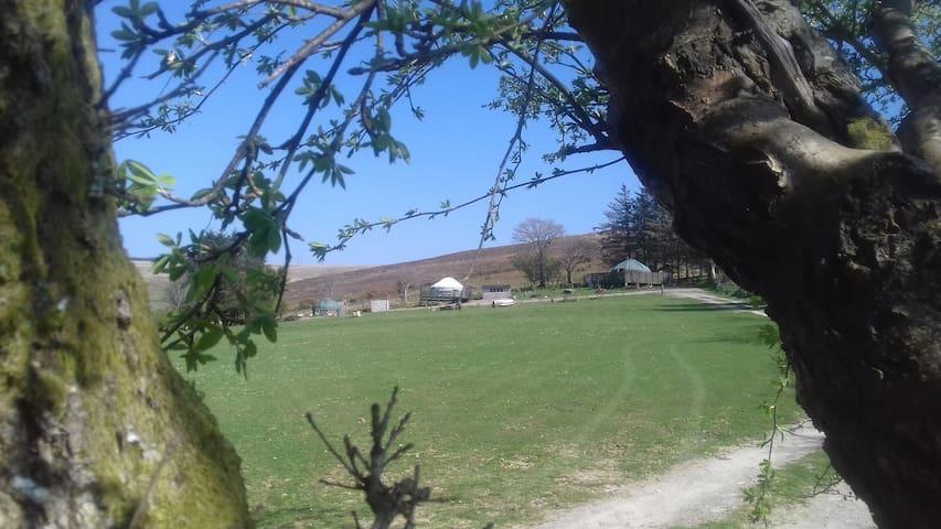 Eco friendly, Quiet, Cosy  Yurt