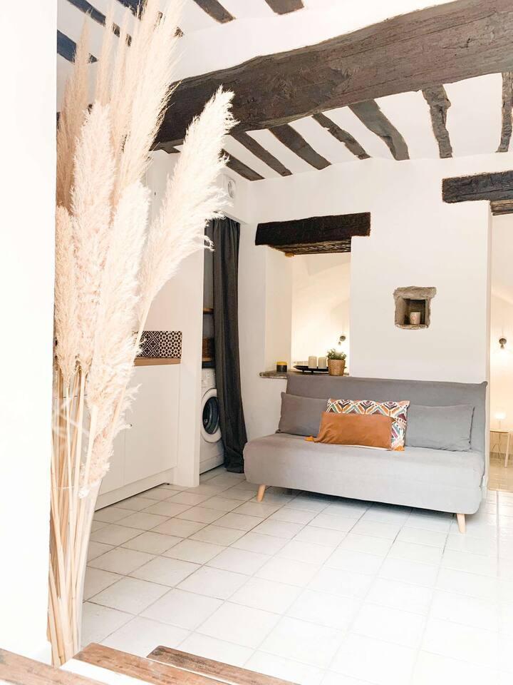 Petit Studio à Lucciana village