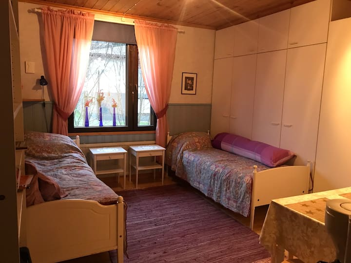 Room for young people 2-beds.