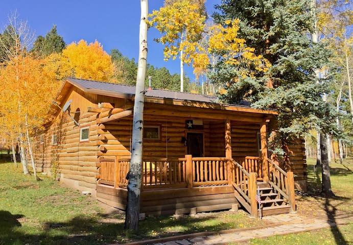 Family Fun Cabin