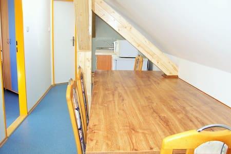 Apartmán na dobrém místě vhodný pro rodiny s dětmi - Holasice