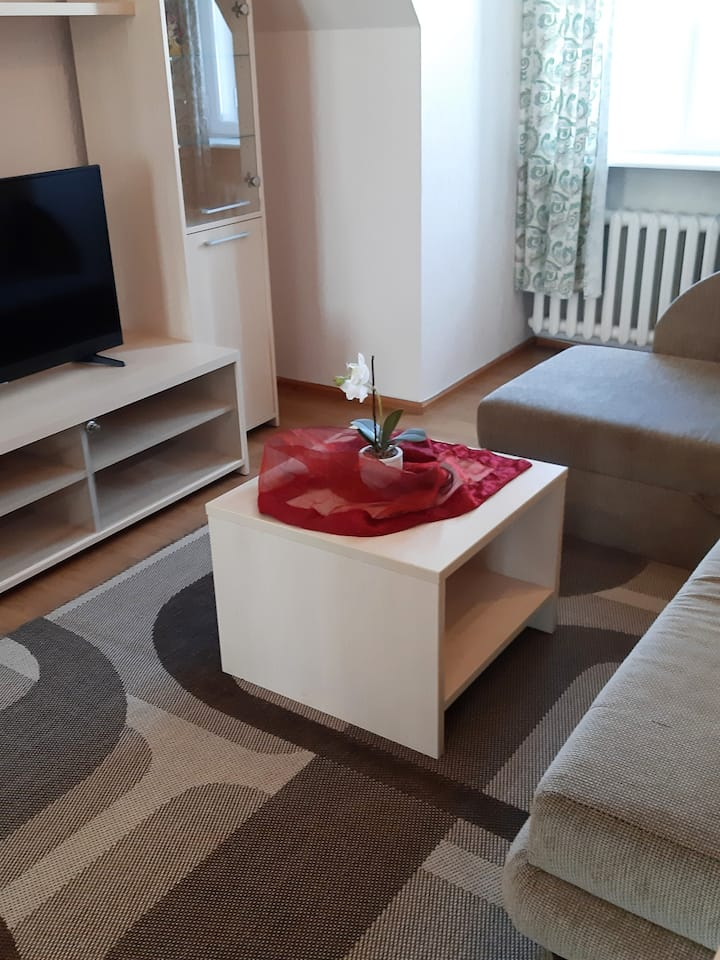 Suur-Karja One-bedroom apartment - Penthouse
