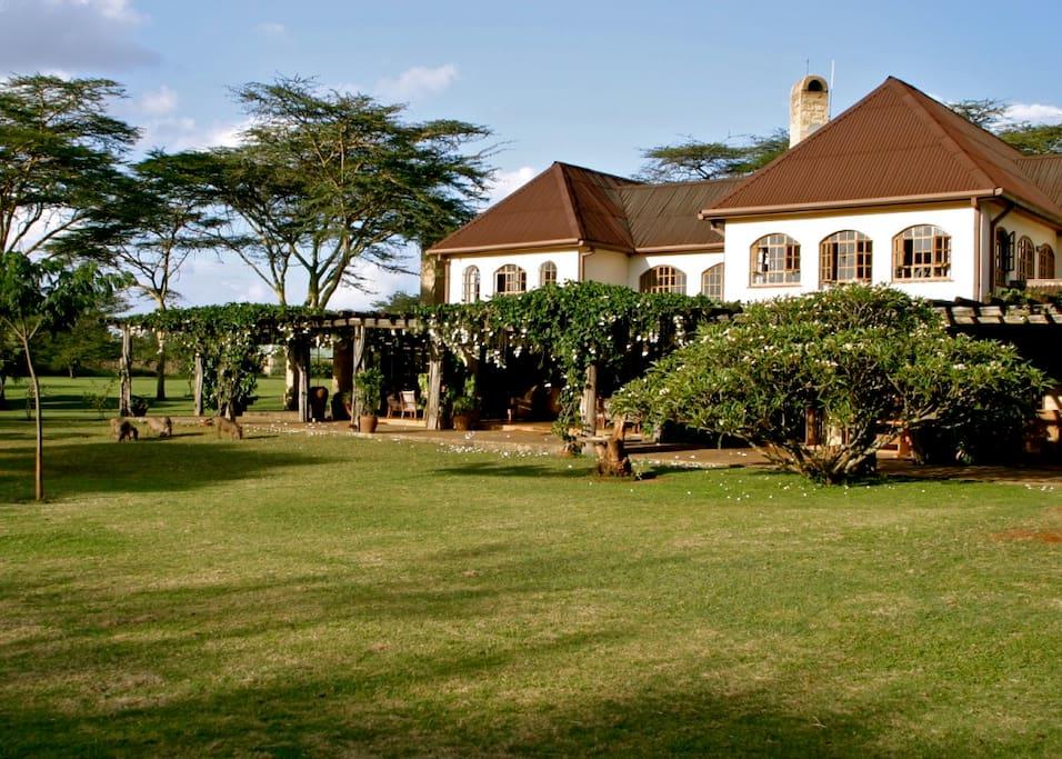 Casa Ya Ndoto - Side view