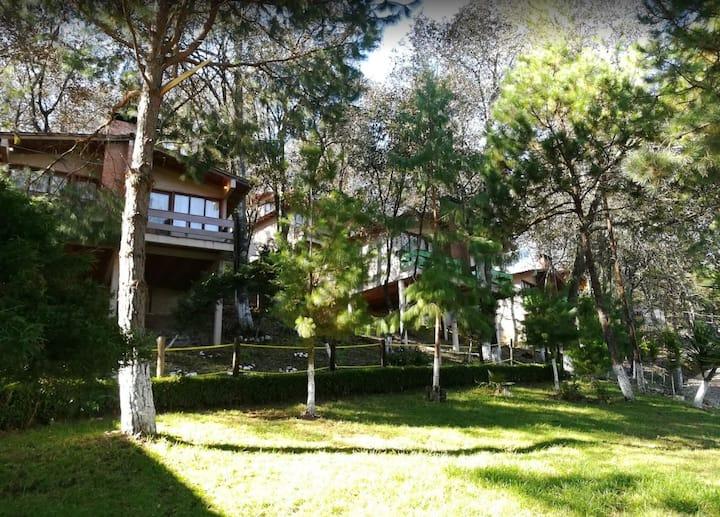 Cabaña Los Bosques- cabaña para 4 pers.