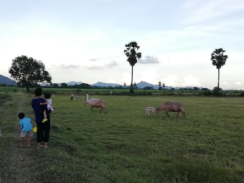 Wanlapa farmstay Lopburi