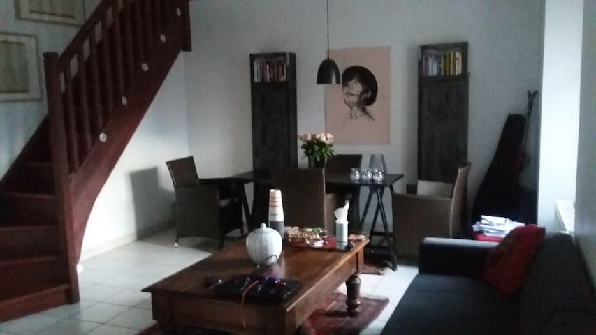 Appartement artistique et chaleureux-hyper centre