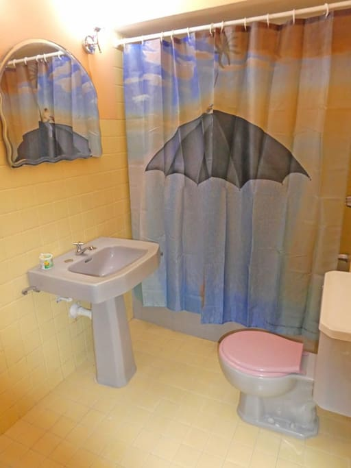 Your ensuite bathroom, with hot water shower