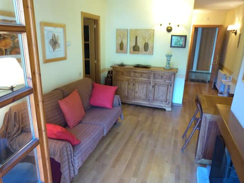 Two-Bedroom Apartment Canillo hut 5368