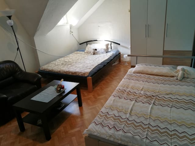 Spacious room close to the Main Station (Hbf)