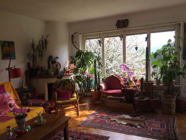 Stanza luminosa immersa nel verde - Losone - Apartment