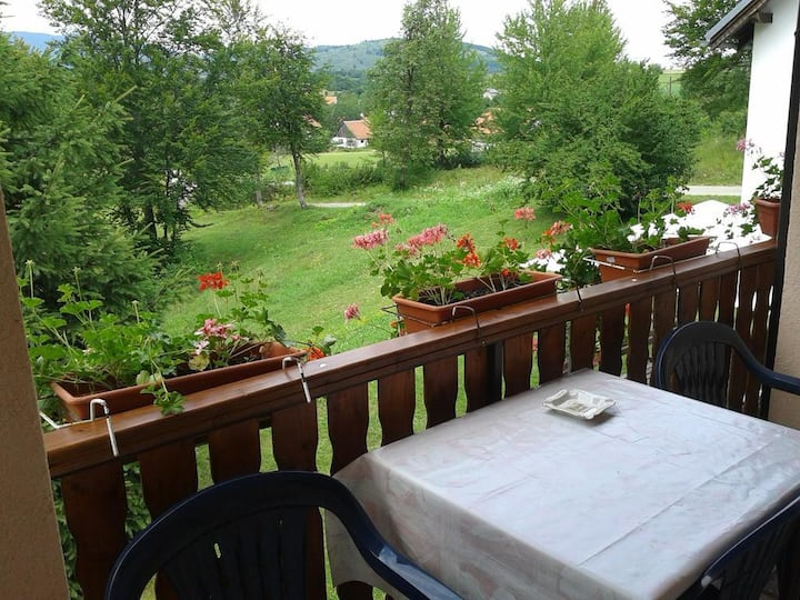 Two bedroom apartment with balcony Smoljanac, Plitvice (A-14603-a)