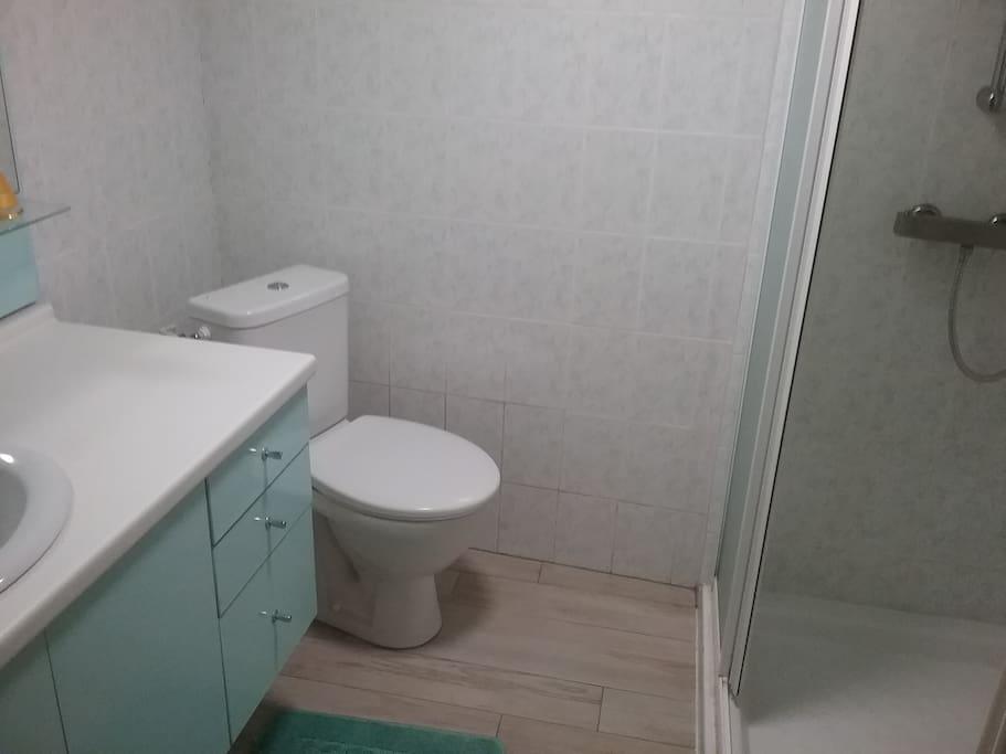 Salle d'eau : lavabo douche, WC