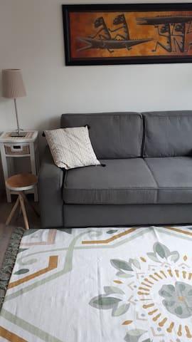 Livingroom, sofabed for 2