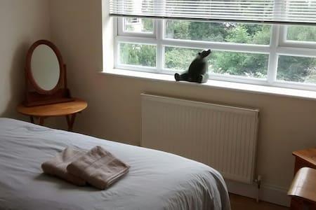 Clean Quiet Bedroom to Rent in Walton On Thames