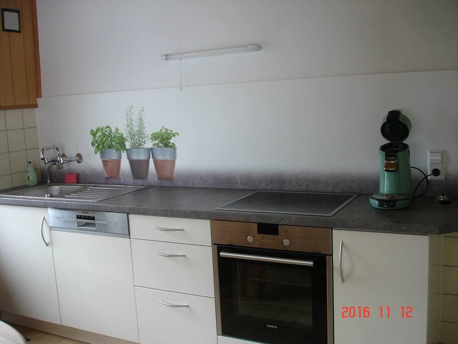 die Einbauküche mit Geschirrspülmaschine