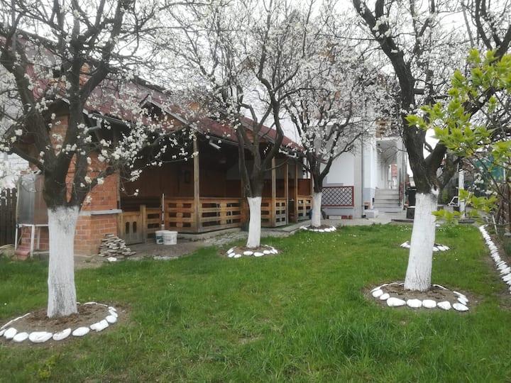 Casa Alina - Camera2