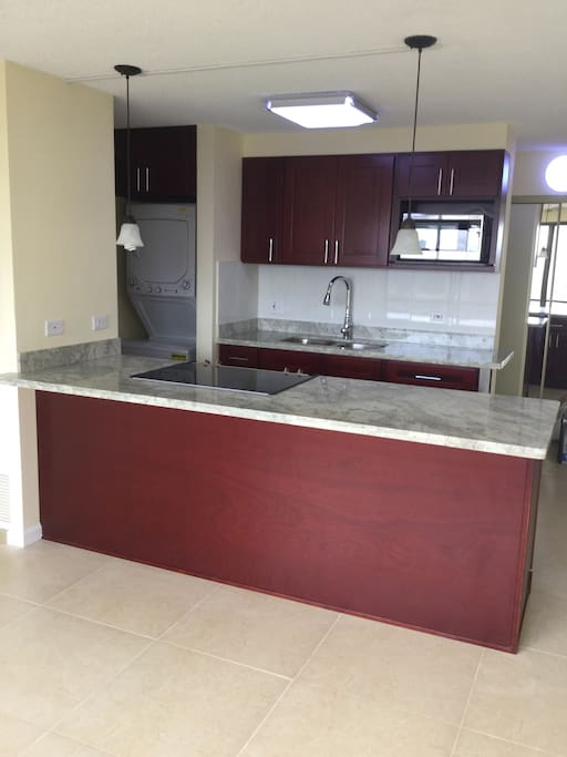Granite top counter with smooth surface cooktop and convection oven