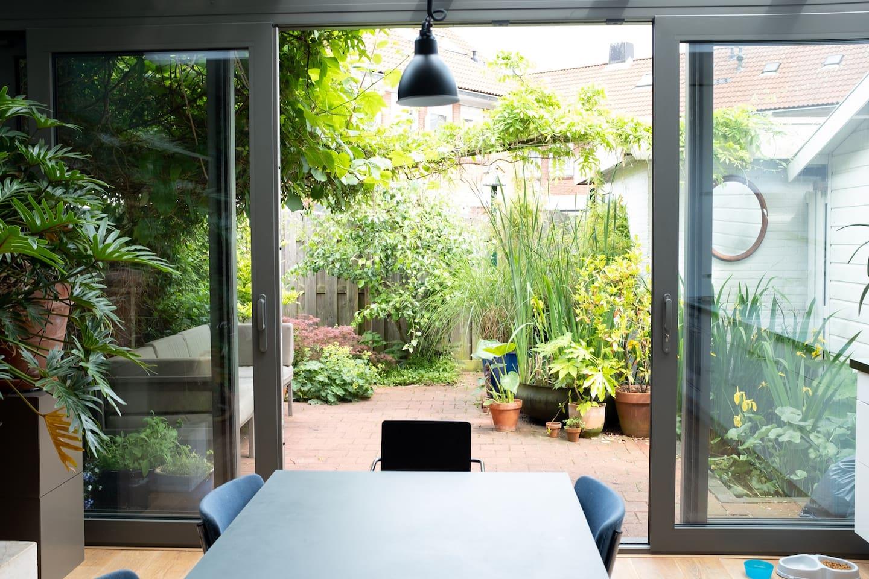 tuin vanuit de serre