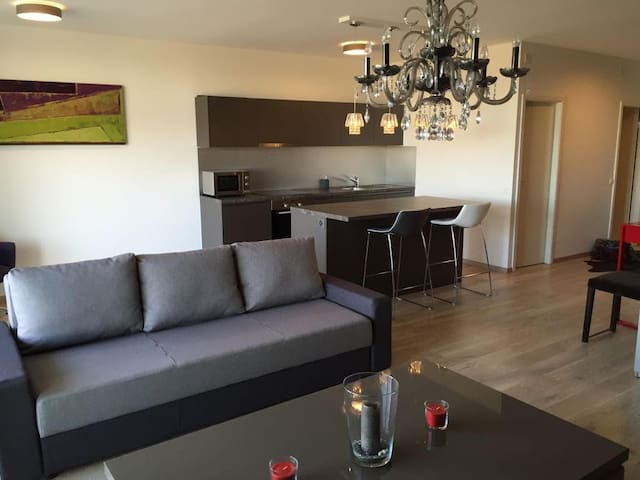 Modern Apartment with great Mountain View - Meyrin - Apartamento