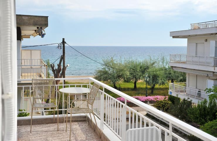 Themis 40 steps from beach - Dionisiou Halkidiki