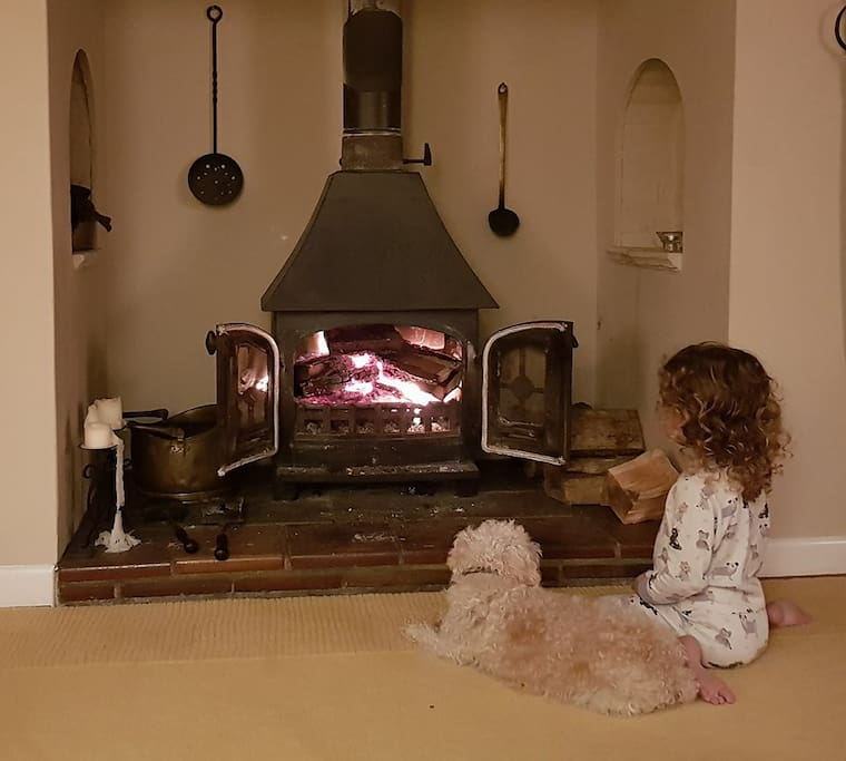 We all love the fire