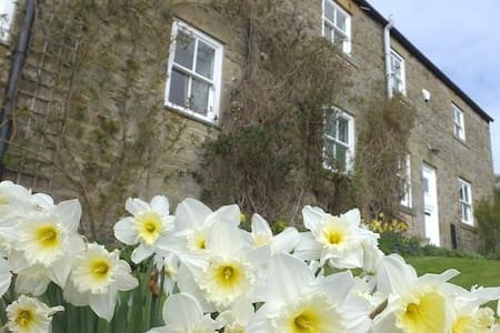Rural farmhouse near Hexham - Hexham - Bed & Breakfast