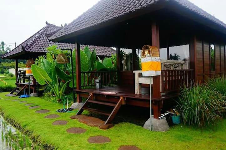 Keramas Surfcamp Bali (ksb) - Blahbatuh  - Huis