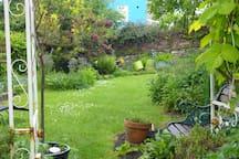 towards the back of the garden.