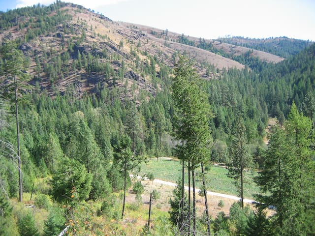 View looking up Elk Canyon.