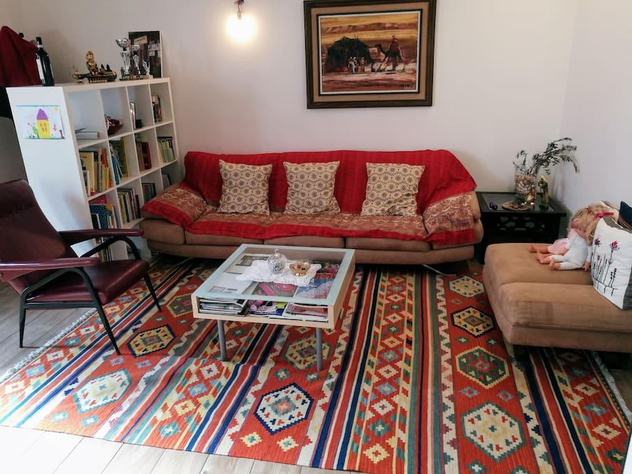 SALOTTO CON DIVANO (COMODO ANCHE PER DORMIRE) - LIVING ROOM WITH SOFA (CONFORTABLE TO SLEEP TOO)