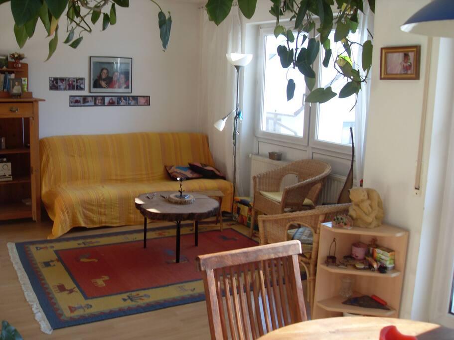 Wohnzimmer mit ausklappbarem Schlafsofa