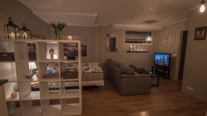 Family friendly apartment located in Reykjavík - Reykjavík - Apartment