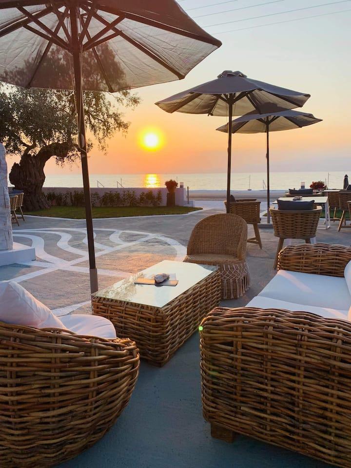 ORAMA Thassos- Beach front-Luxurious-Greek Island